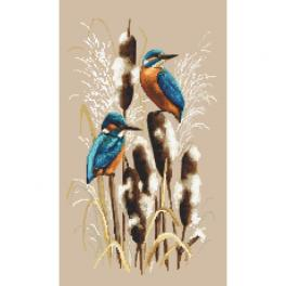 Graphic pattern - Kingfishers in the reeds