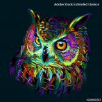 Cross stitch kit - Pillow - Colourful owl
