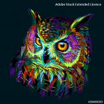 ONLINE pattern - Colourful owl