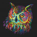 Set with tapestry and mouline - Colourful owl