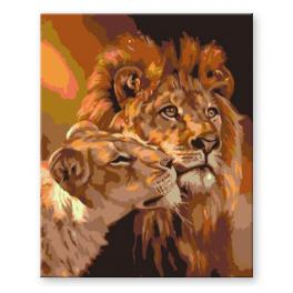 CZ AN17 Painting by numbers kit - Lion with a lioness