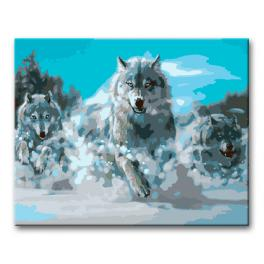 Painting by numbers kit - Wolves running in the snow