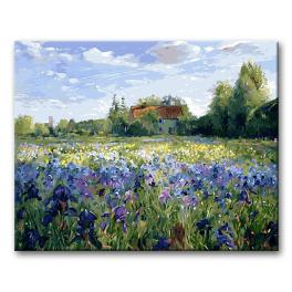 CZ 38539 Painting by numbers kit - House in the countryside