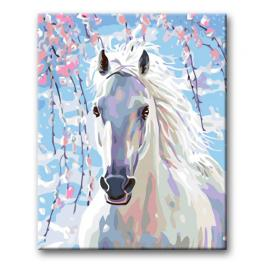CZ 13941 Painting by numbers kit - White horse