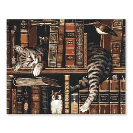 CZ RA148 Painting by numbers kit - Cat in a library