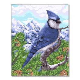 WD H106 Painting by numbers kit - Blue jay