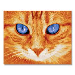 GX32128 Painting by numbers - Blue-eyed redhead