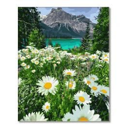 GX29451 Painting by numbers - Dasies in the mountains