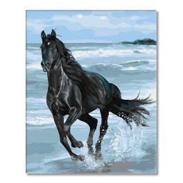 GX29330 Painting by numbers - Black Mustang