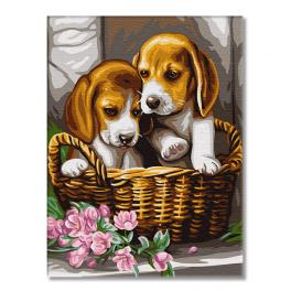 GX29695 Painting by numbers - Puppies in a basket