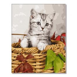 GX26366 Painting by numbers - Kitten in the basket