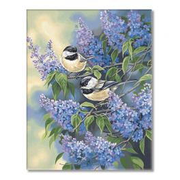 VPN-0189070 Painting by numbers - Chickadees and lilacs