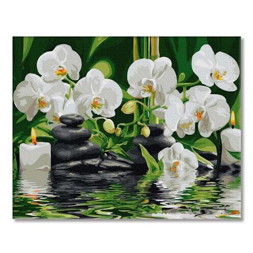 PC4050567 Painting by numbers - Orchids in quiet water