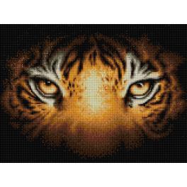M AZ-1827 Diamond painting kit - Tiger look
