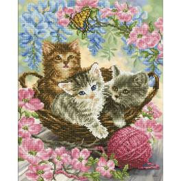 DD10.035 Diamond painting kit - Kitty knits