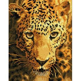 DD6.005 Diamond painting kit - Jaguar prowl