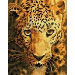 DD6.005 Diamond painting kit - Jaguar prowl