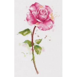 PAC 7190 Cross stitch kit - Watercolour rose