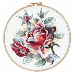 W 10305 ONLINE pattern pdf - Frosted roses