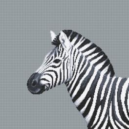 Z 10656 Cross stitch kit - Black and white zebra