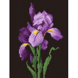 K 499 Tapestry canvas - A violet iris