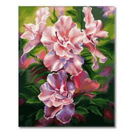 WD S065 Painting by numbers - Azalea