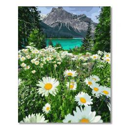 PC4050657 Painting by numbers - Mountain camomile landscape