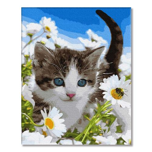 PC4050284 Painting by numbers - Kitten in a field of chamomiles