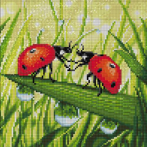 M AZ-1787 Diamond painting kit - Ladybug couple