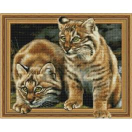 5PD4050039 Diamond painting kit - Lynx