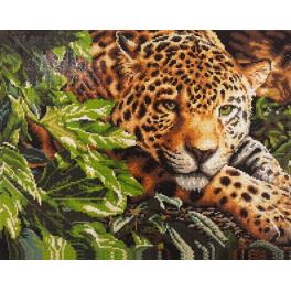 PD4050001 Diamond painting kit - Jaguar