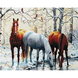 PD4050097 Diamond painting kit - Horses by the river