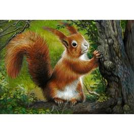 ZTDE 7033 Diamond painting kit - Forest squirrel