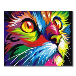 PC4050344 Painting by numbers - Rainbow cat