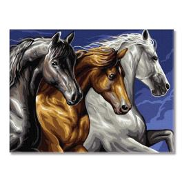 PC3040038 Painting by numbers - Three horses