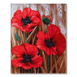 PC4050463 Painting by numbers - Scarlet poppies