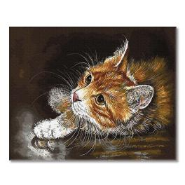PC4050664 Painting by numbers - Red kitten
