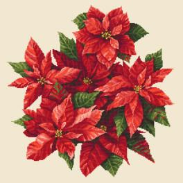 ZN 10673 Cross stitch kit with tapestry - Poinsettia II