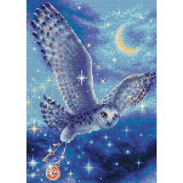 RIO AM0041 Diamond painting kit - Magic owl