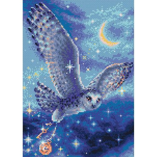 RIO AM0041 Diamond painting kit - Magic owl