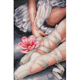 LPN-0188131 Diamond painting kit - My little ballerina shoes