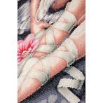 LPN-0188131 Diamond painting kit - My little ballerina shoes
