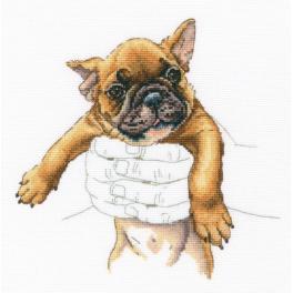 ZTM 821 Cross stitch kit - In palms - French bulldog