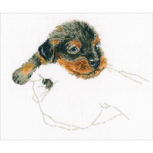 ZTM 818 Cross stitch kit - In palms - dachshund