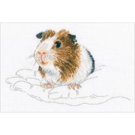 ZTM 817 Cross stitch kit - In palms - guinea pig