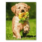 PC4050743 Painting by numbers - Dog with a flower