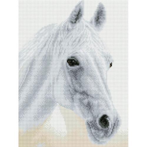 DQ8.009 Diamond painting kit - Arabian beauty