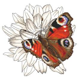 ZI 10330 Cross stitch kit with mouline and beads - Butterfly and dahlia flower