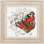 Z 10330 Cross stitch kit - Butterfly and dahlia flower