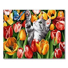GX27243 Painting by numbers - Tulip kitten